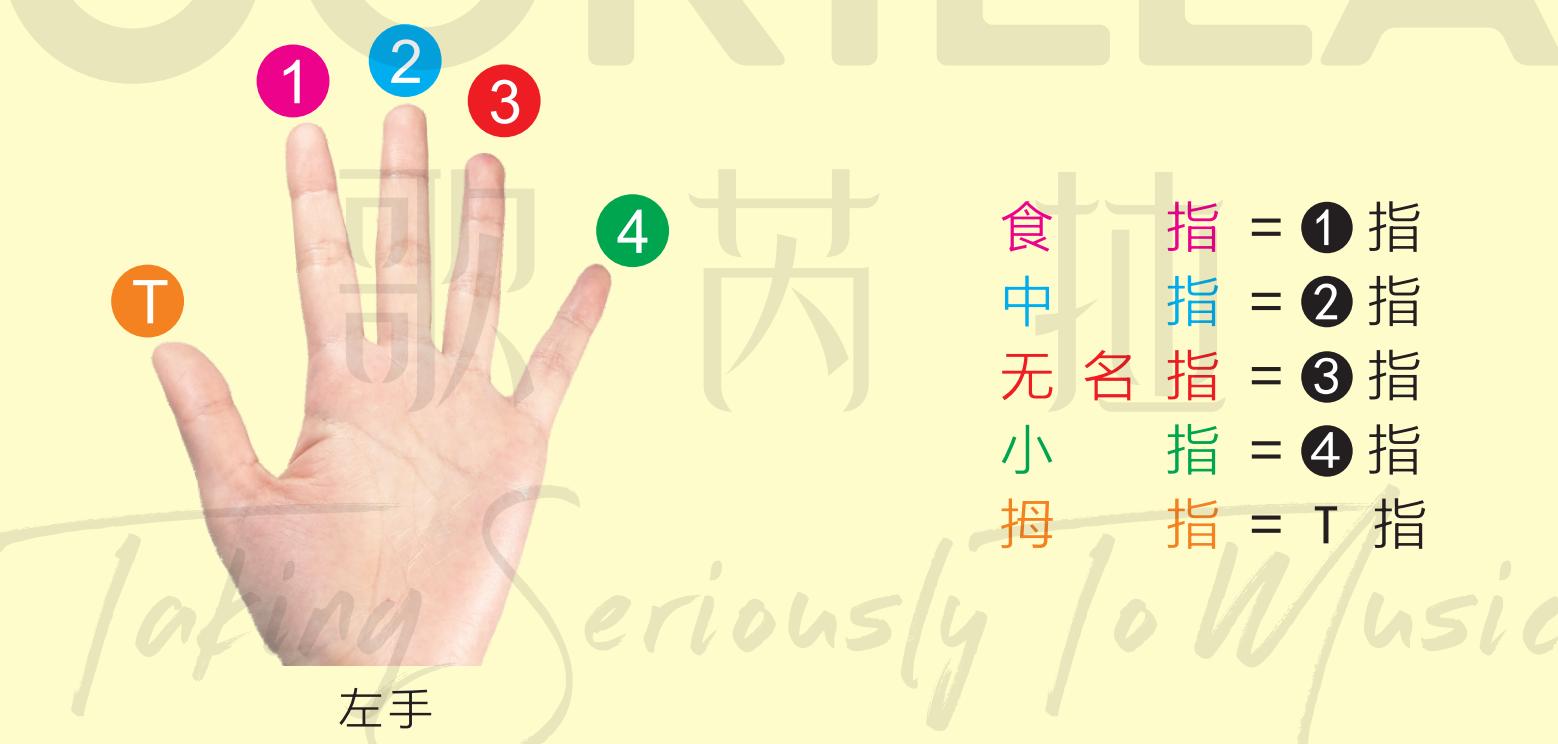 【歌芮拉吉他零基础入门教学】第三课:左右手分工